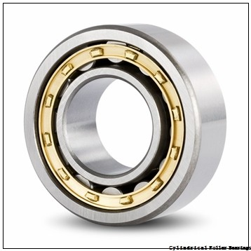 75 mm x 115 mm x 30 mm  ISO SL183015 cylindrical roller bearings