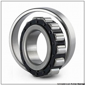 25 mm x 52 mm x 15 mm  CYSD NU205E cylindrical roller bearings