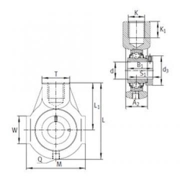 INA RHE20 bearing units