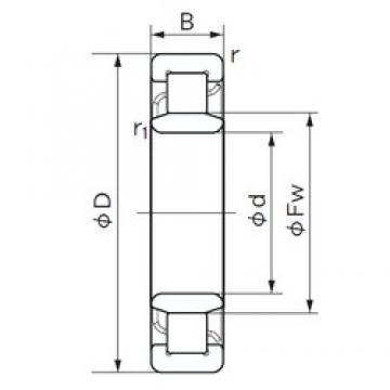 180 mm x 380 mm x 126 mm  NACHI NU 2336 cylindrical roller bearings