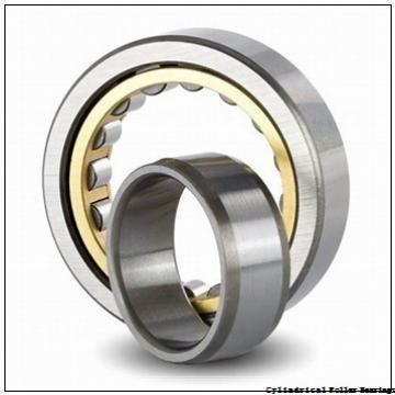 200 mm x 250 mm x 24 mm  NSK NCF1840V cylindrical roller bearings