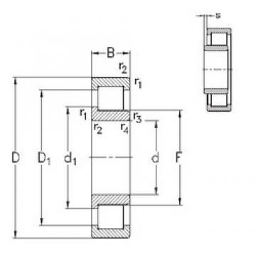 30 mm x 62 mm x 16 mm  NKE NJ206-E-TVP3 cylindrical roller bearings