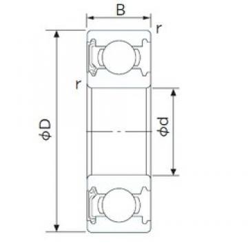 12 mm x 24 mm x 6 mm  NACHI 6901NSE deep groove ball bearings