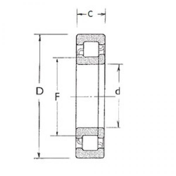 65 mm x 120 mm x 31 mm  FBJ NUP2213 cylindrical roller bearings #3 image