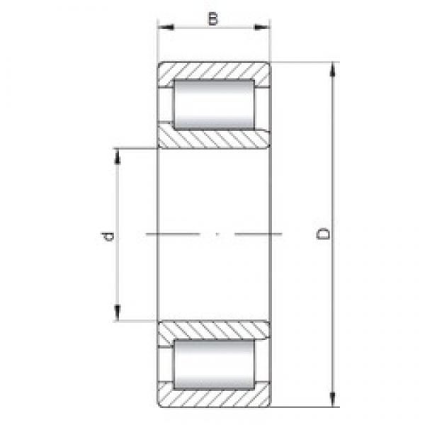 80 mm x 170 mm x 58 mm  ISO NJF2316 V cylindrical roller bearings #3 image