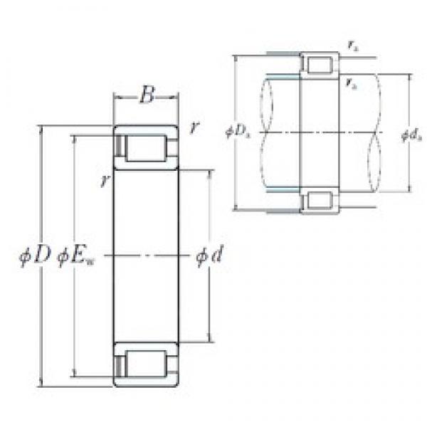 200 mm x 250 mm x 24 mm  NSK NCF1840V cylindrical roller bearings #3 image