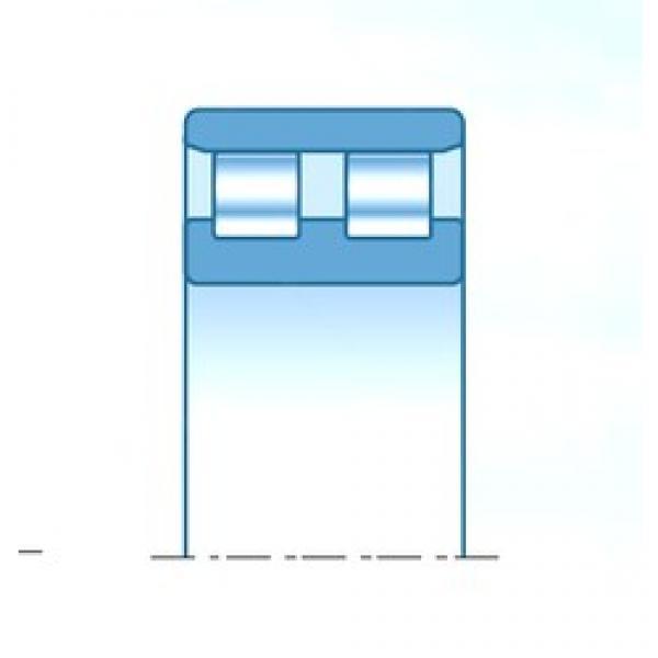 120 mm x 180 mm x 46 mm  NTN NN3024KC1NAP4 cylindrical roller bearings #3 image