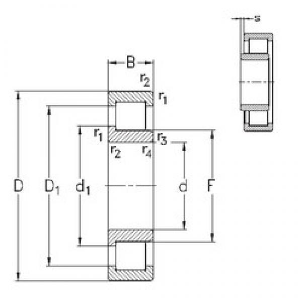 95 mm x 170 mm x 43 mm  NKE NJ2219-E-MA6 cylindrical roller bearings #3 image